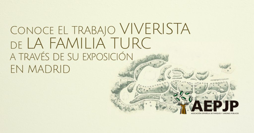 Conoce el trabajo de la familia viverista Turc a través de su exposición en Madrid
