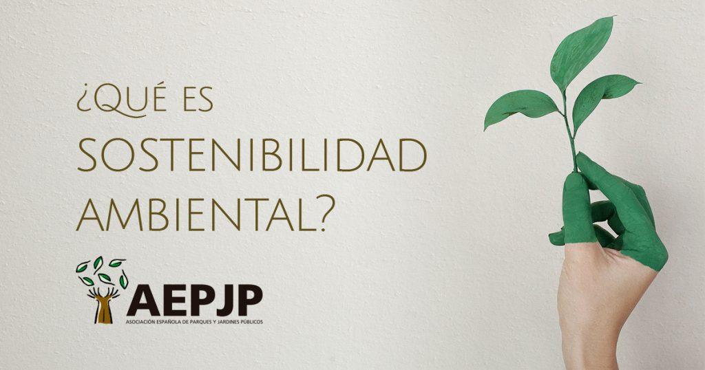 ¿Qué es sostenibilidad ambiental?