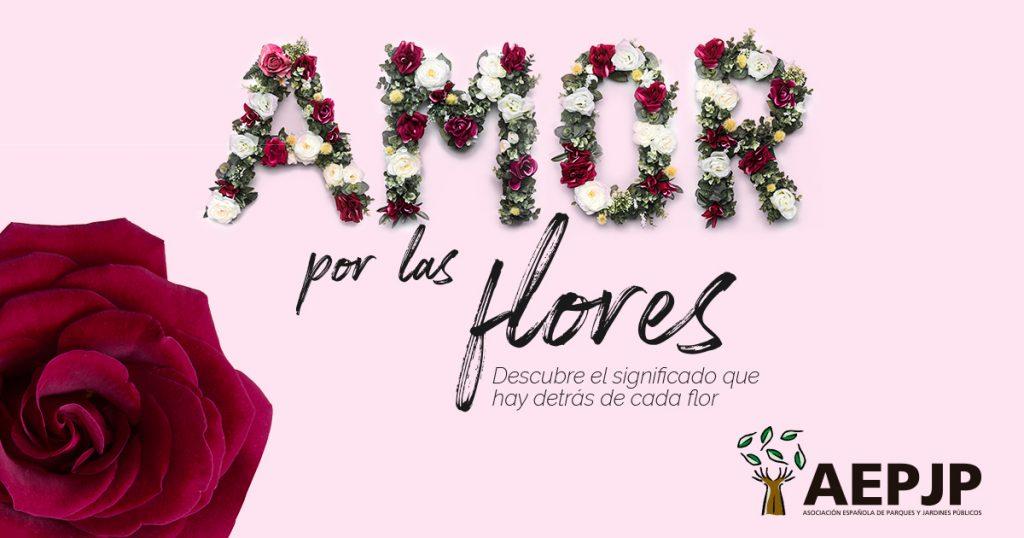 portada-flores-de-amor