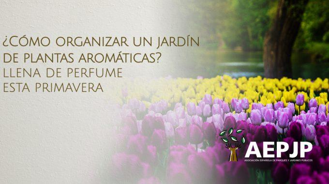 Imagen De Cómo Organizar Un Jardín De Plantas Aromáticas