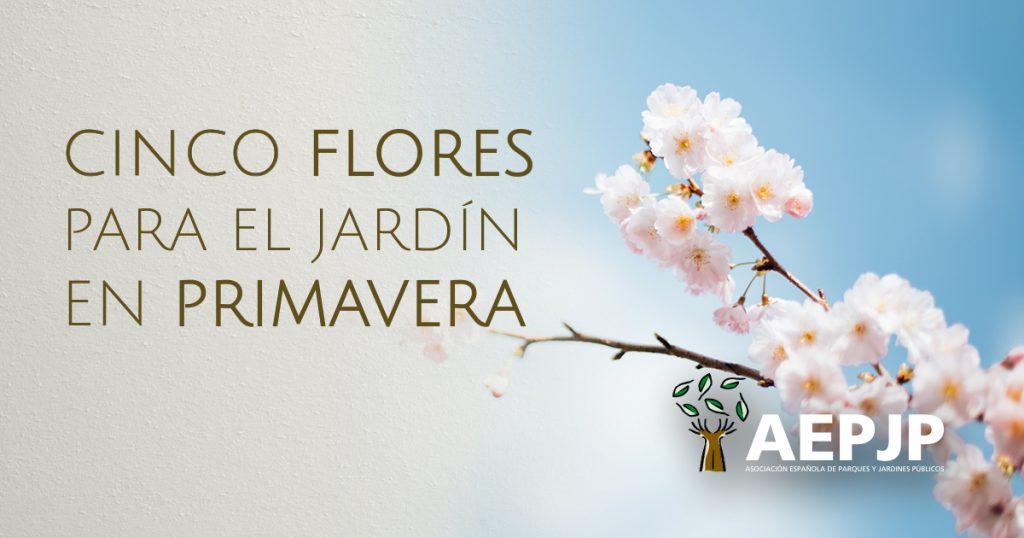 portada cinco flores para el jardín en primavera