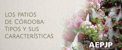 Portada Los Patios De Córdoba, Tipos Y Sus Características(49)