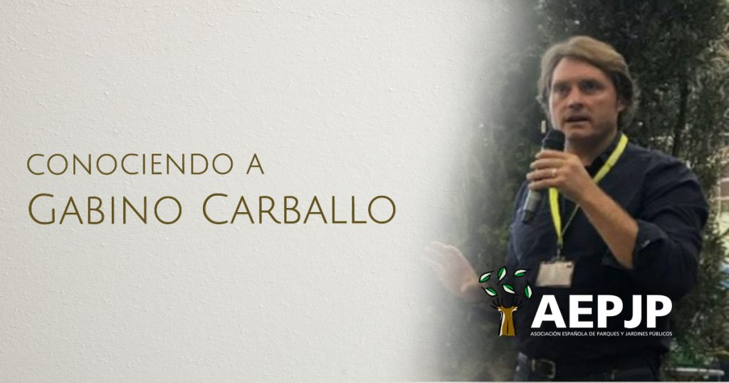 Conociendo a Gabino Carballo