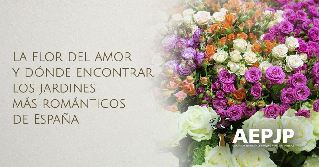 Portada la flor del amor