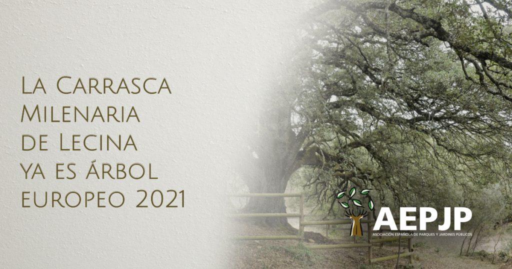 portada carrasca de lecina arbol europeo 2021