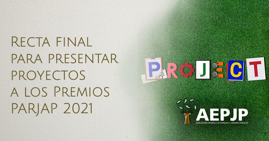 portada recta final para presentar proyectos premios parjap 2021