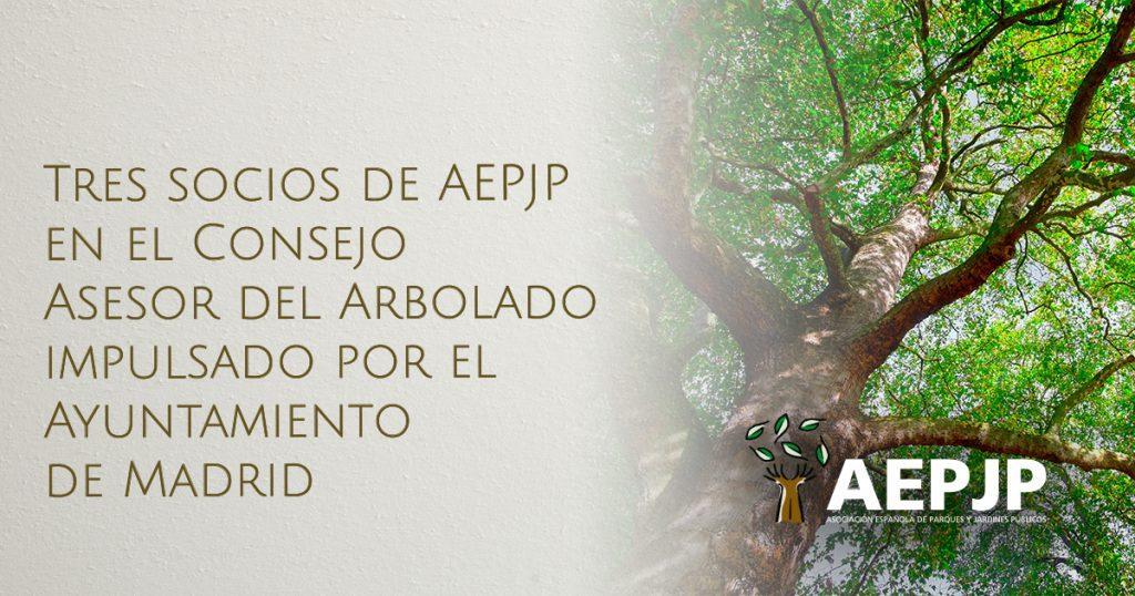 portada tres socios de aepjp