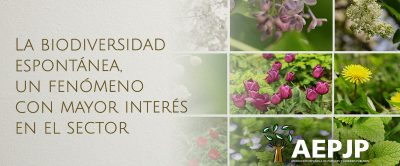 Portada Biodiversidad Espontánea