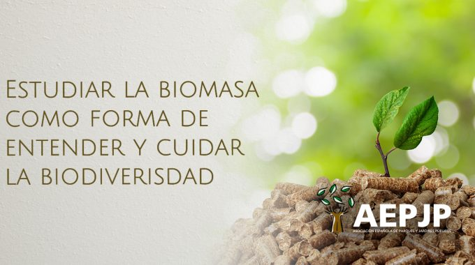 Portada Estudiar La Biomasa